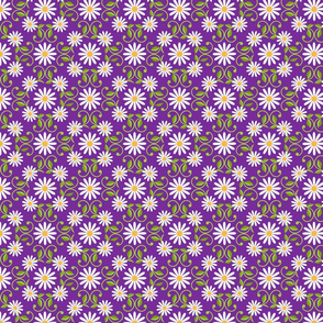 Daisy Square- purple-  large