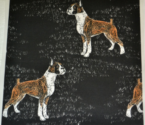 Tinted Scratchboard Boxer