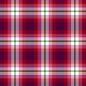 MorningGloryPlaid
