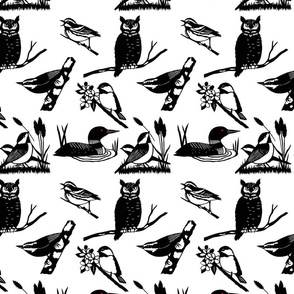 Papercut Birds