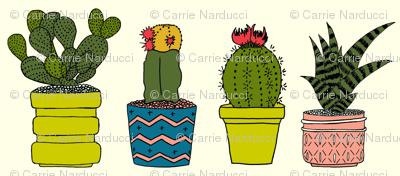 Four Cacti