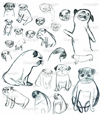 Pug_small_to_medium_preview