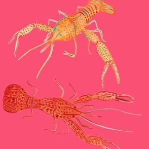Crawfish - Pink
