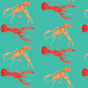 Crawfish - Teal