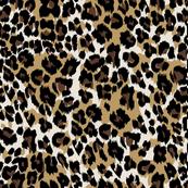 julie_lamb_leopard