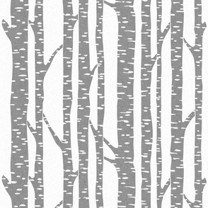 birch_enlarged_grey