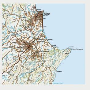 hawkes bay map cushion front