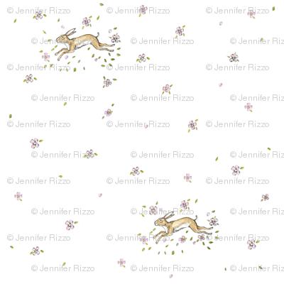 Springtime_hare