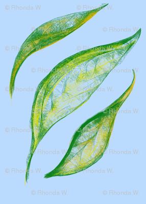 Gum Leaf Lattice