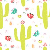 Cacti___succulents_collection-01_shop_thumb