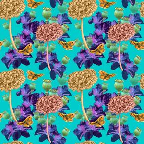 primula_design_turquoise_bold