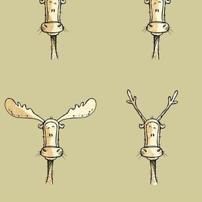 Antlers on beige