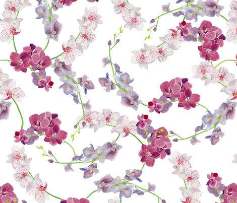 Orchid fabric by katebillingsley on Spoonflower - custom fabric
