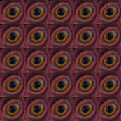 Chicken Eye I