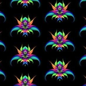 Exotic (black background)