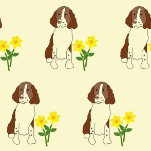 Springer Spaniel with flowers