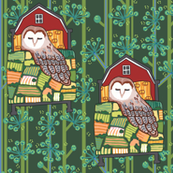 barn owl_ LEAD 3: green meadow