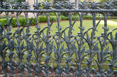 Cornstalk fence 1
