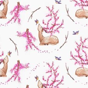Blossom, my deer!