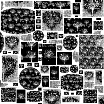 Wallpaper Agapanthus