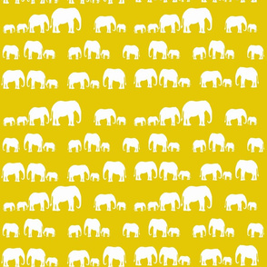 elephantsyellowgroup2_copy
