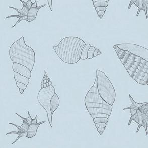 Seashells pale blue by Sara Aurora Waters