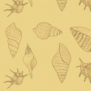 Seashells pale yellow by Sara Aurora Waters