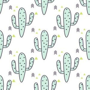Mint Cactus and purple arrows