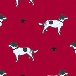 Jack Russell POPPY BLOOD RED