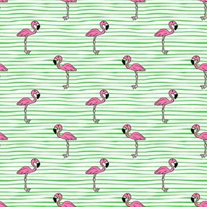 Flamingos on stripes // green