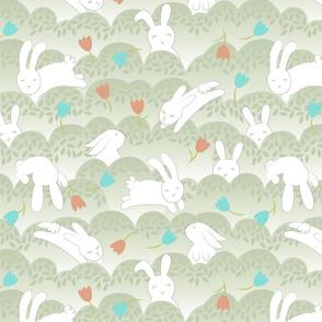 Frolicking spring time bunnies