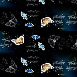 Inverted African Butterflies