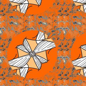 tora light orange