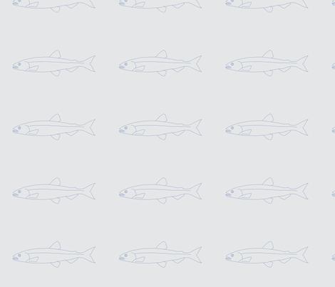 Fish shoals grey fine line fabric by delfine on Spoonflower - custom fabric