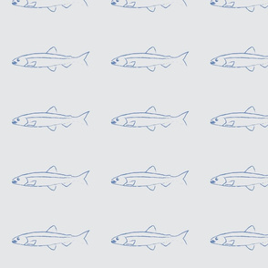 Fish shoals grey medium design