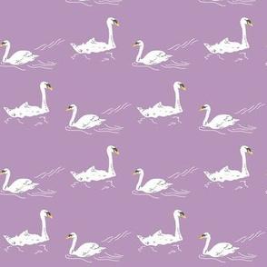 Swan Lake - lavendar