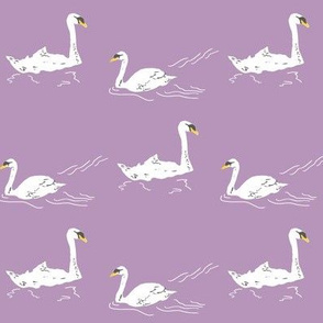 Swans in the pond- lavendar