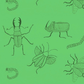 Dark green Insects by Sara Aurora Waters