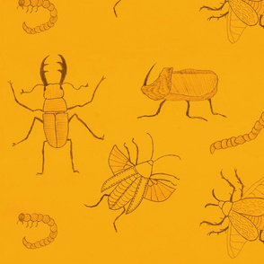 Yellow Insects by Sara Aurora Waters