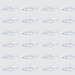 Fish shoals  grey small design