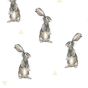 Rabbits + Triangles on White