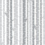 Birch_trees_gray_on_white_background_large_shop_thumb