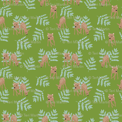 Fawns on Green