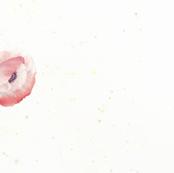 Watercolor Poppy Single Border