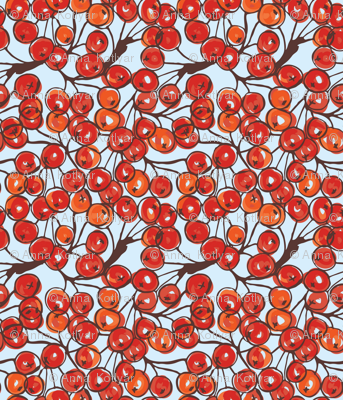 Rowan berries brushed with barker on blue