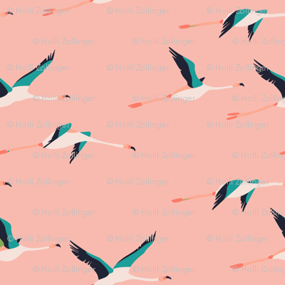 flamingo_coastal