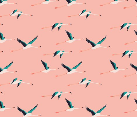 5220342_rflamingo_coastal.ai1_shop_preview