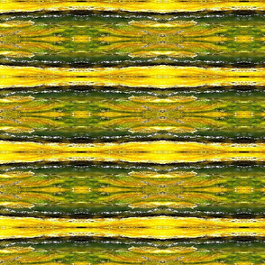 Waimangu green and yellow stripes
