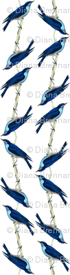Rbluebirdpattern_preview