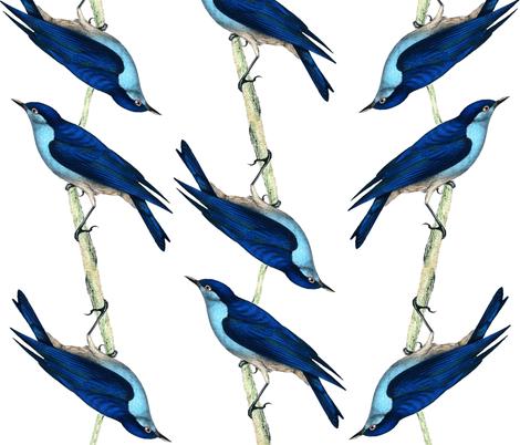 Bluebirds fabric by dianabrennan on Spoonflower - custom fabric